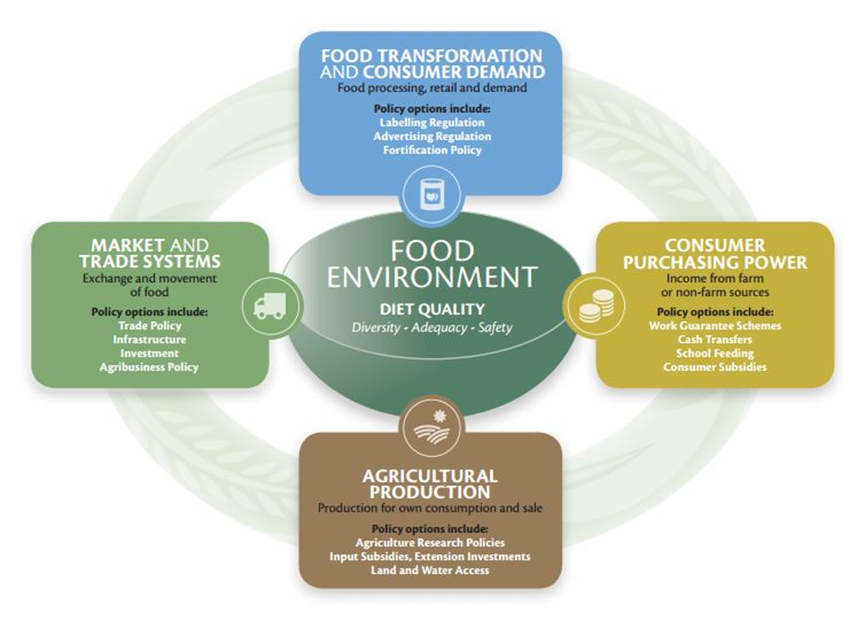 Frameworks such as this show the multi-dimensional nature of food systems, incorporating consideration of the environment, climate change, health, and inclusive economic development.