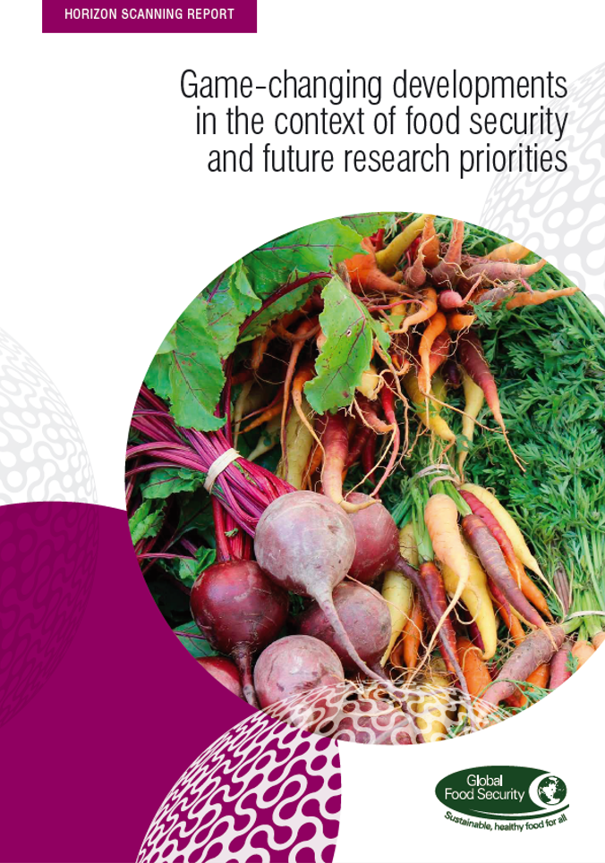 Horizon scanning report: Game-changing developments in the context of food security and future research priorities