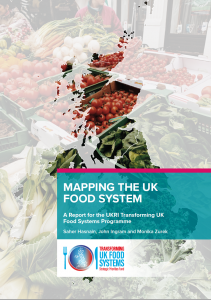 Cover of the report Mapping the UK Food System
