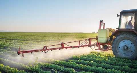 A tractor spraying crops in a field