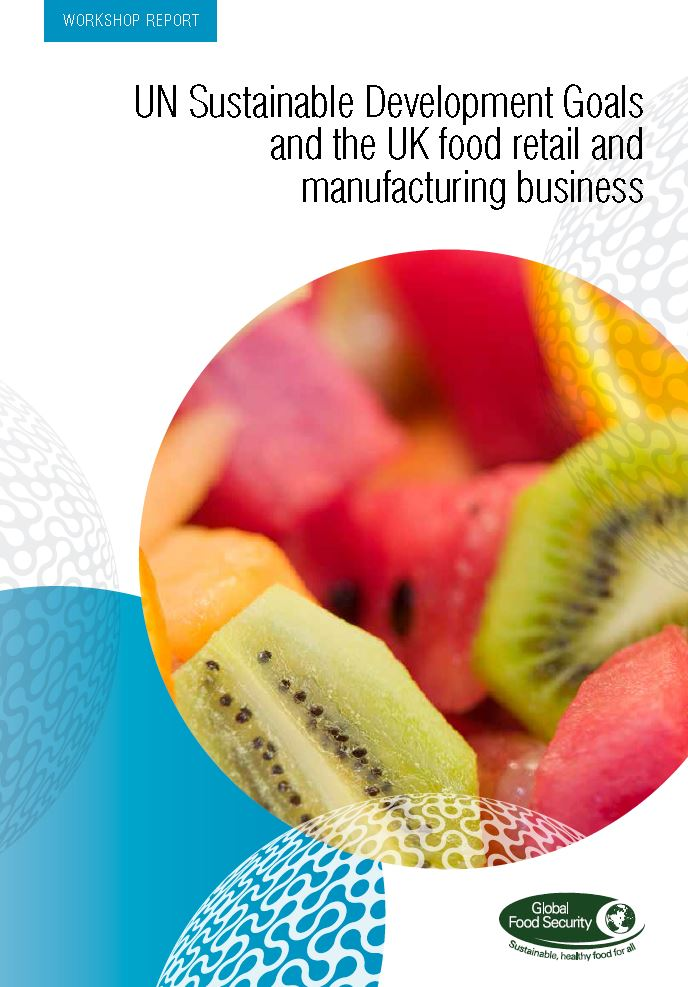 Cover image of the UN Sustainable Development Goals and the UK food retail and manufacturing business