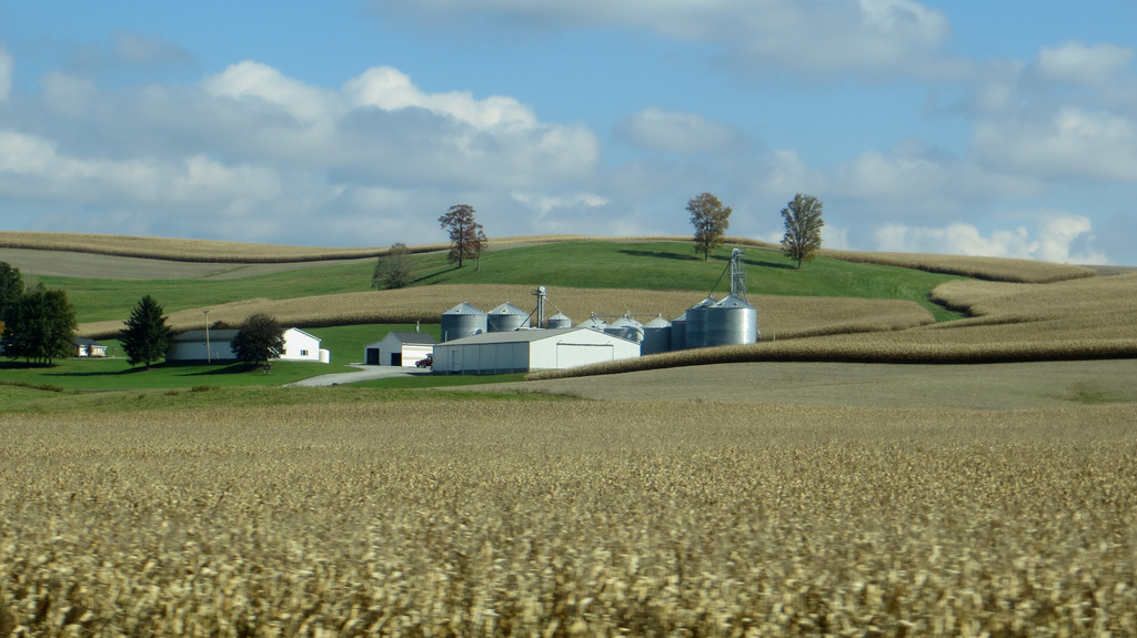 A modern farm surrounded by fields