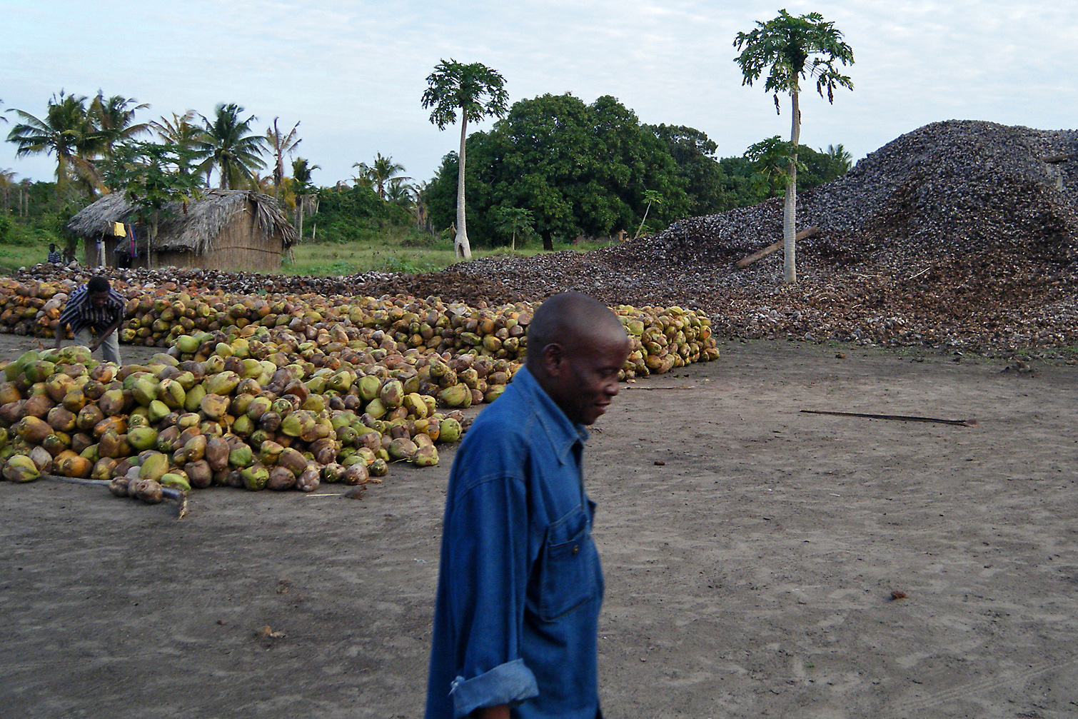 A coconut processing plant in Mozambique