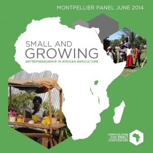 Cover image of 'Small and Growing: entrepreneurship in African agriculture' report