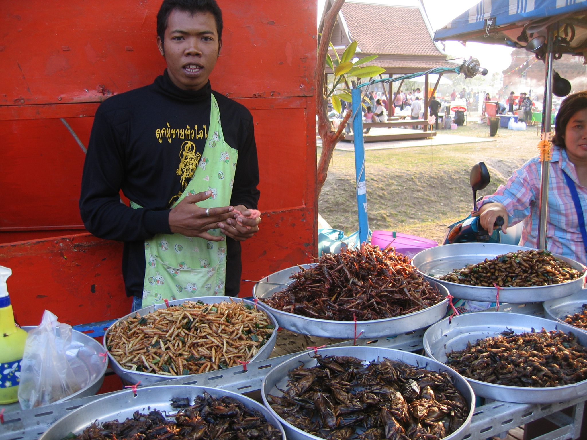 Insects for sale on a market stall