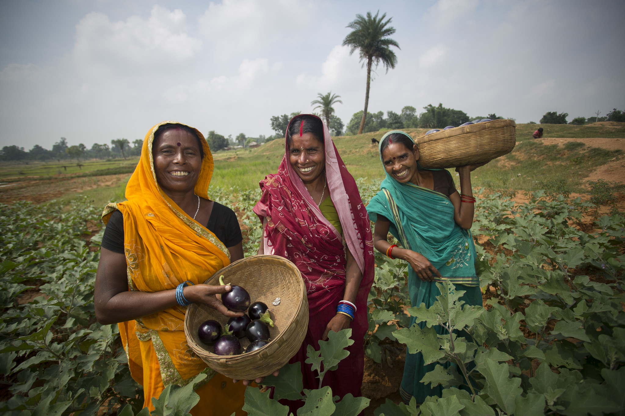 Farmers in the Banka District of Bihar