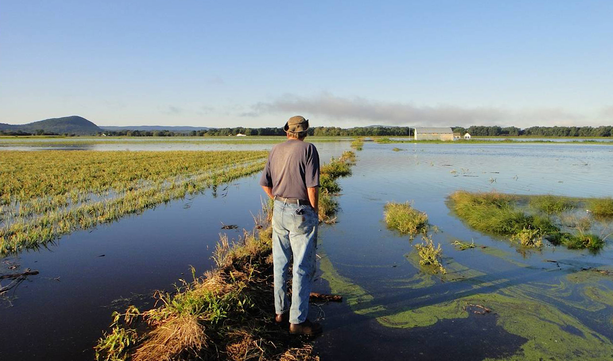 Flooded crop field in the US after a hurricane