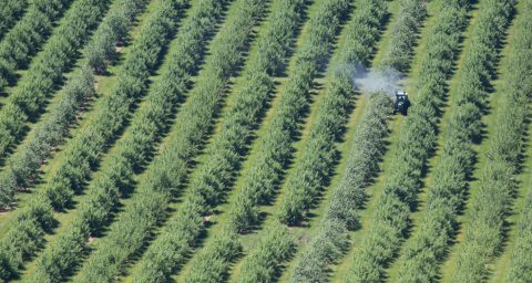 Tractor spraying crops with chemicals