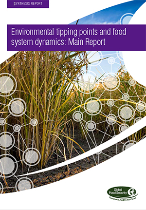 Environmental tipping points and food system dynamics: Main report