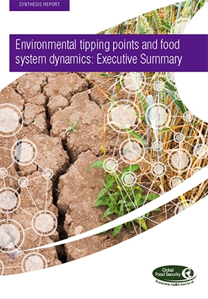 Environmental tipping points and food system dynamics: Executive summary