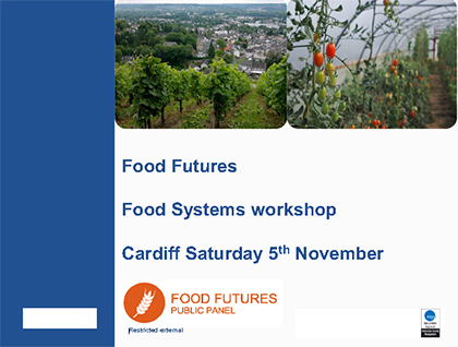 Food Futures Panel: Food systems workshop