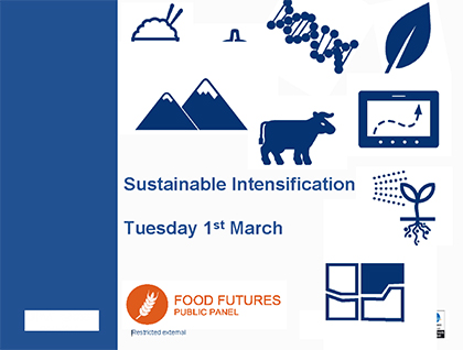 Food Futures Panel: Sustainable intensification