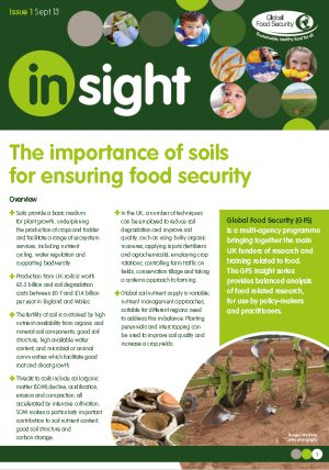 Insight: The importance of soils for ensuring food security