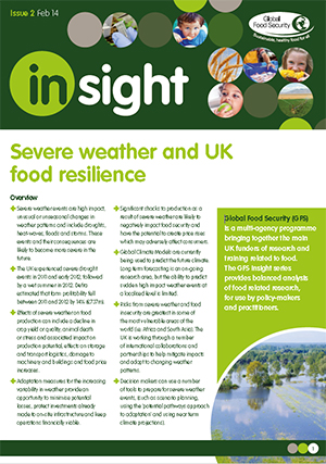 Insight: Severe weather and UK food resilience