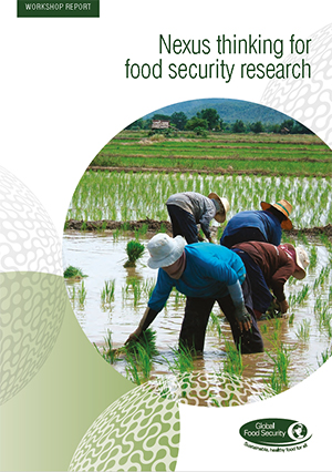 Nexus thinking for food security research