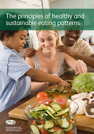 The principles of healthy and sustainable eating patterns