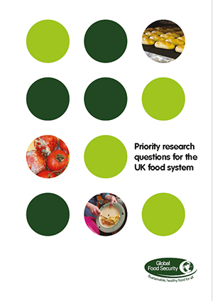 Priority research questions for the UK food system