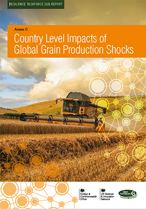 Country level impacts of global grain production shocks