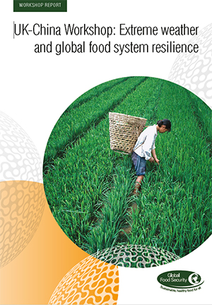 UK-China workshop: Extreme weather and global food system resilience