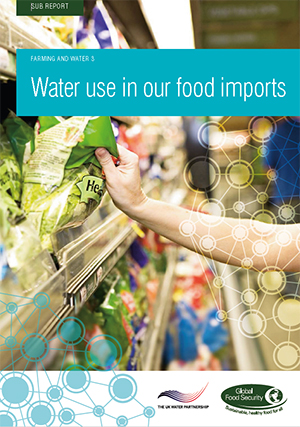 Water use in our food imports