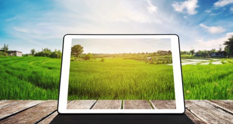 Tablet on wooden table with countryside in background